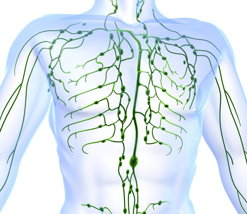 Lymph Therapy Techniques