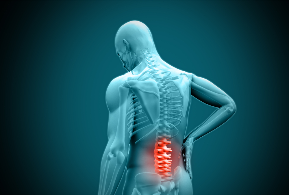Low Back Pain: The big picture